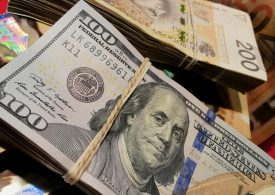 The dollar index today shows stability
