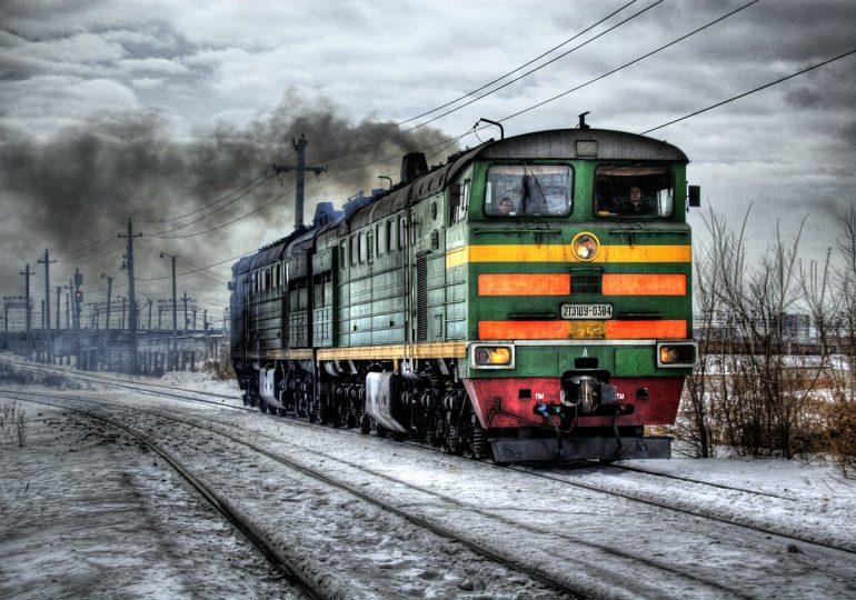 Рост объема товарооборота между Россией и Алжиром: преимущества сотрудничества